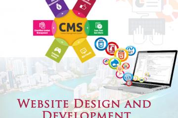 Website Design and Development Company in Miami